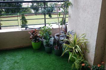Terrace garden Pune