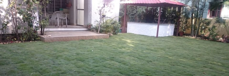 We provide landscaping Affordable and Great